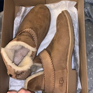 Ugg ankle boots chesnut